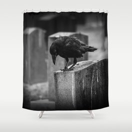 Cemetery Crow Shower Curtain