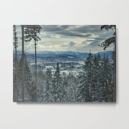 Fraser Valley in the Winter Metal Print