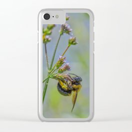 Industrious Bee Clear iPhone Case
