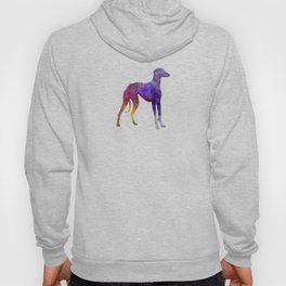Arabian Greyhound in watercolor Hoody