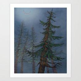 Forest Moonlight Art Print