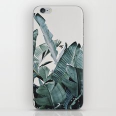 Plumage iPhone Skin