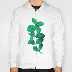 Green Leaves in White background Hoody