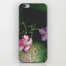 Duet iPhone & iPod Skin