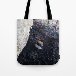 Between the Tides (Point Lobos) Tote Bag