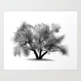 Light Cottonwood Art Print