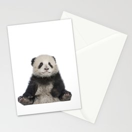Cute Young Giant Panda Stationery Cards