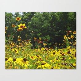 Wildflower Meadow Canvas Print