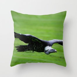 Great vulture in flight Throw Pillow