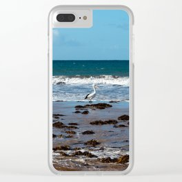 Pelican Standing in Encounter Bay Clear iPhone Case