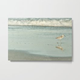 Exit Stage Right -- Willet Foraging Shallow Surf at the Beach Metal Print