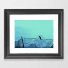 thoughtful parrot  Framed Art Print