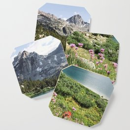 Sierra Alpine Wildflowers Coaster