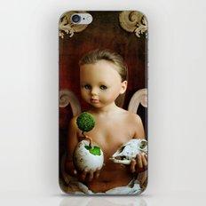 The Balance. iPhone & iPod Skin