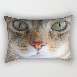 Livingstone - Zambia Rectangular Pillow