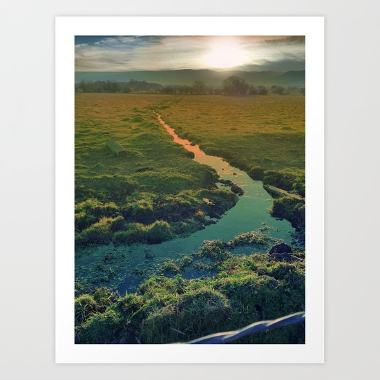 country feedback Art Print