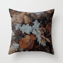 AUTUMN - LEAVES - PHOTOGRAPHY Throw Pillow