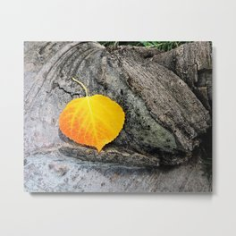 Golden Aspen Leaf Autumn Woodland Scene Metal Print