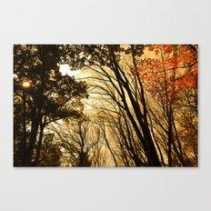 Autumn Boughs Canvas Print