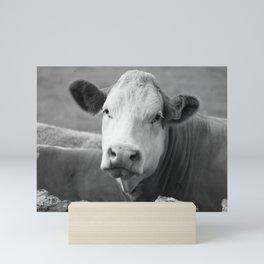 The laughing cow Mini Art Print