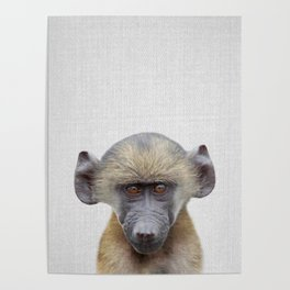 Baby Baboon - Colorful Poster