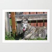 greyhound Art Prints featuring Greyhound by Kamilla