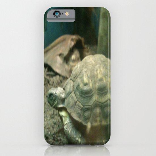 Giant Turtle iPhone & iPod Case