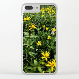 """""""You Belong Among the Wildflowers"""" Clear iPhone Case"""