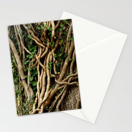 Laced! Stationery Cards