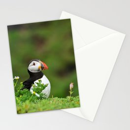 Puffin from Ireland  (RR 238) Stationery Cards