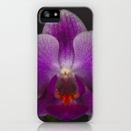 A Beautiful Close Up Of A Purple Orchid iPhone Case