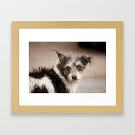 Now thats a face. Framed Art Print