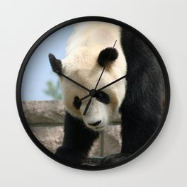 Panda20170506_by_JAMFoto Wall Clock