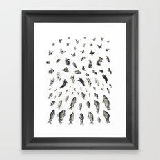 BEGGINNINGS Framed Art Print