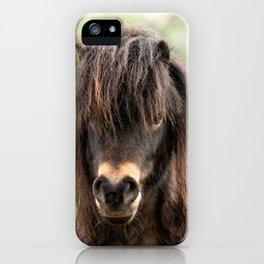 Lucky Pony iPhone Case