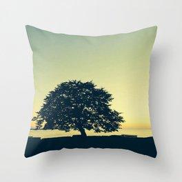 Sundown at Stanley Park Throw Pillow