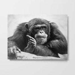 You talkin' 2 me? Metal Print