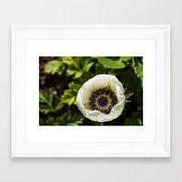 blink 182 Framed Art Prints featuring Blink by The Botanist's Daughter