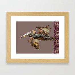 Brown Pelican Flight with Vintage Burgundy Stripe Framed Art Print
