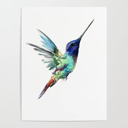 Flying Hummingbird flying bird, turquoise blue elegant bird minimalist design Poster