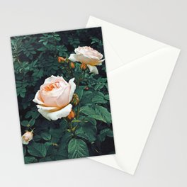 Dark Garden Stationery Cards