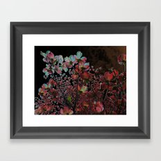Solarization  Framed Art Print