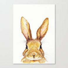 Miss Bunny Canvas Print
