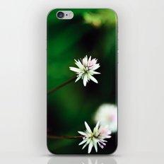 Near & Far iPhone & iPod Skin