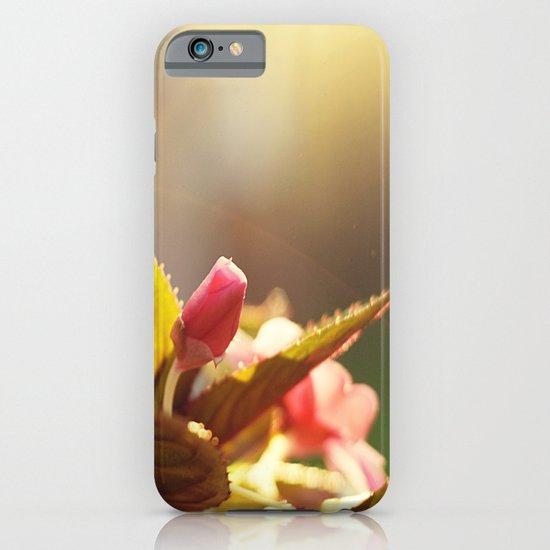 Summer Light II iPhone & iPod Case