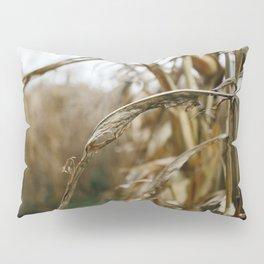 Autumn Cornstalk II Pillow Sham