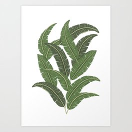 Paloo - Banana Leaves Art Print