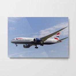 British Airways and Birds Metal Print