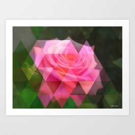 Pink Roses in Anzures 4 Art Triangles 1 Art Print