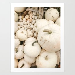Modern Autumn : White Pumpkins Art Print